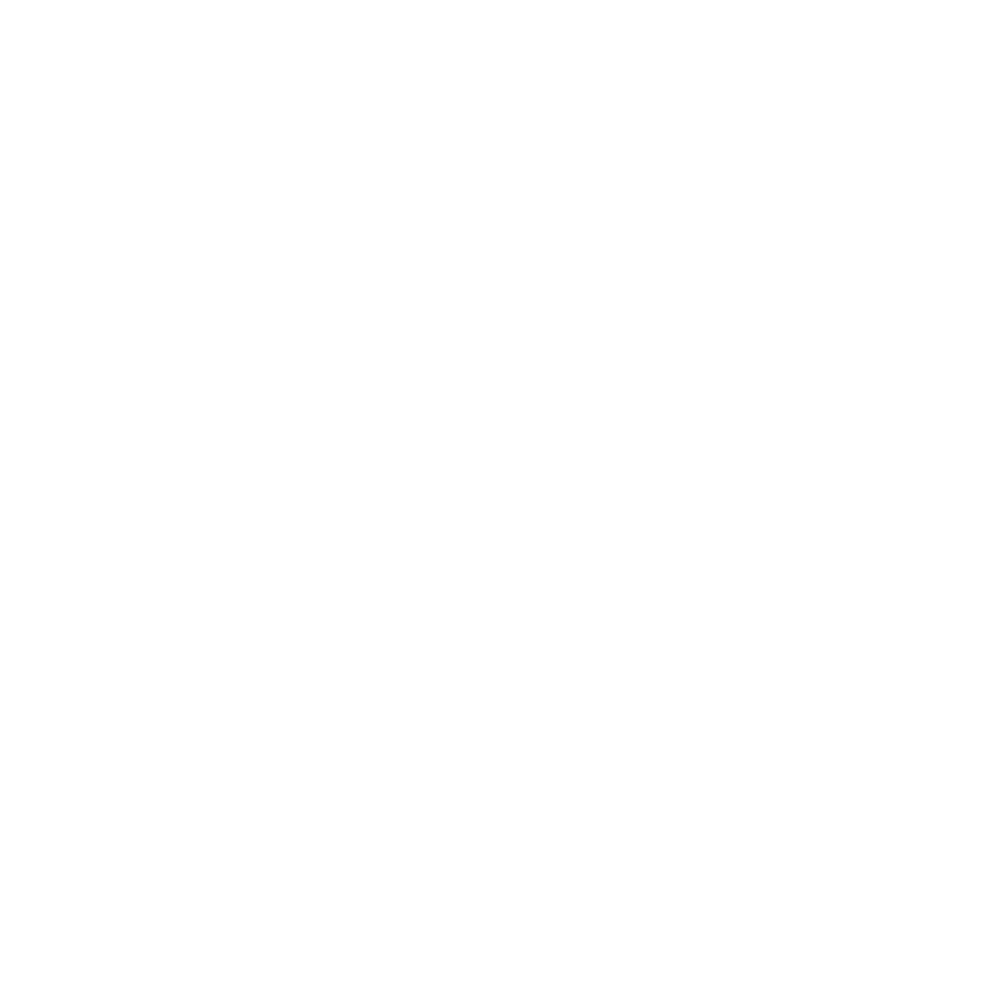 Busterpunch logo