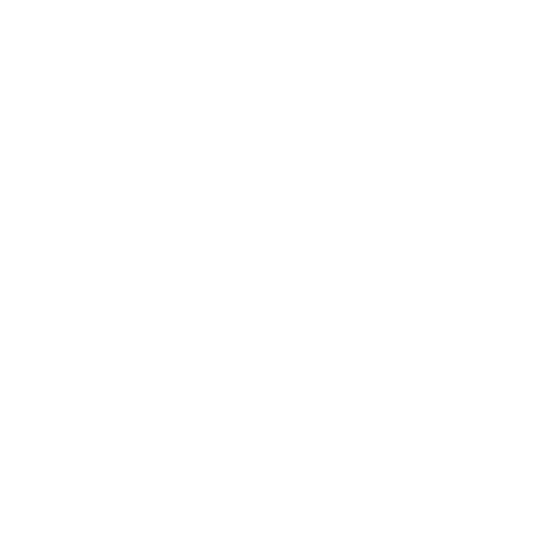 Seletti Logo